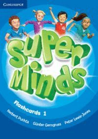 SUPER MINDS LEVEL 1 FLASHCARDS (PACK OF 103)