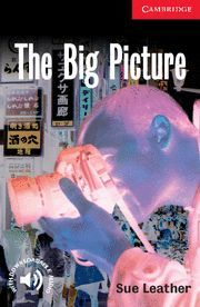 THE BIG PICTURE LEVEL 1