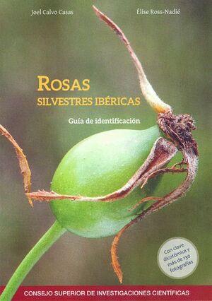 ROSAS SILVESTRES IBÉRICAS