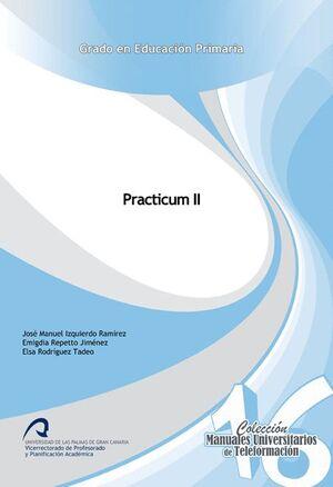PRACTICUM II