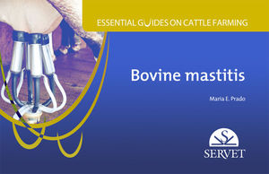 ESSENTIAL GUIDES ON CATTLE FARMING.  BOVINE MASTITIS