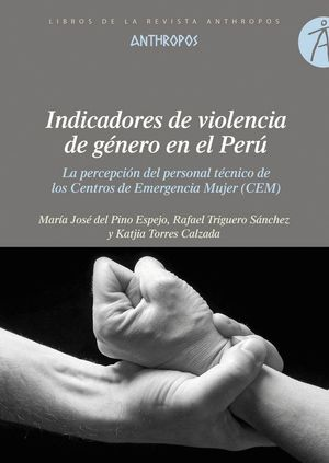 INDICADORES DE VIOLENCIA DE GÉNERO EN EL PERÚ LA PERCEPCIÓN DEL PERSONAL TÉCNICO DE LOS CENTROS DE E