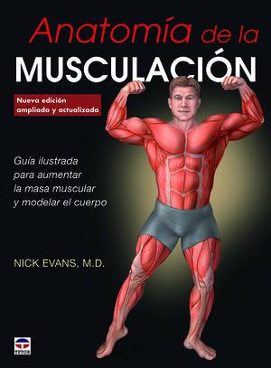 ANATOMÍA DE LA MUSCULACIÓN
