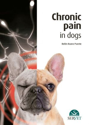 CHRONIC PAIN IN DOGS