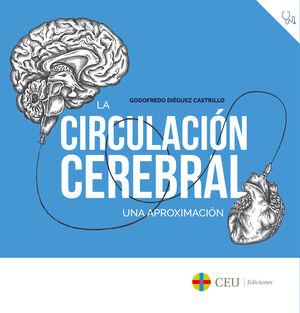 LA CIRCULACIÓN CEREBRAL