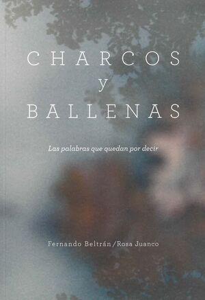 CHARCOS Y BALLENAS