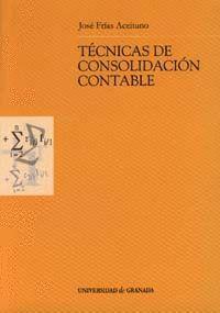 TÉCNICAS DE CONSOLIDACIÓN CONTABLE