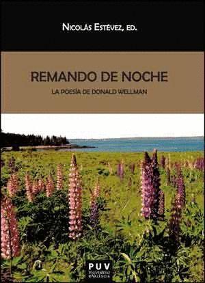 REMANDO DE NOCHE