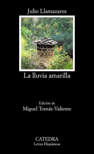 LA LLUVIA AMARILLA