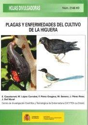 PLAGAS Y ENFERMEDADES DEL CULTIVO DE LA HIGUERA