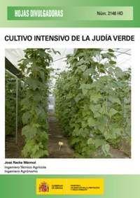 CULTIVO INTENSIVO DE LA JUDÍA VERDE