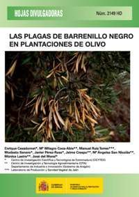 LAS PLAGAS DE BARRENILLO NEGRO EN PLANTACIONES DE OLIVO