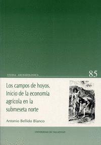 LOS CAMPOS DE HOYOS. INICIO DE LA ECONOMÍA AGRÍCOLA EN LA SUBMESETA NORTE