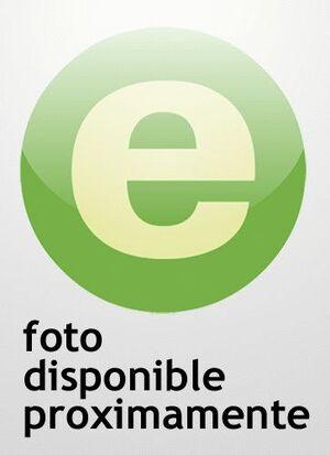 PRÁCTICA DEL RECURSO DE AMPARO CONSTITUCIONAL : COMENTARIOS, JURISPRUDENCIA Y FORMULARIOS)