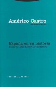 . ENSAYOS SOBRE HISTORIA Y LITERATURA