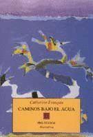CAMINOS BAJO EL AGUA