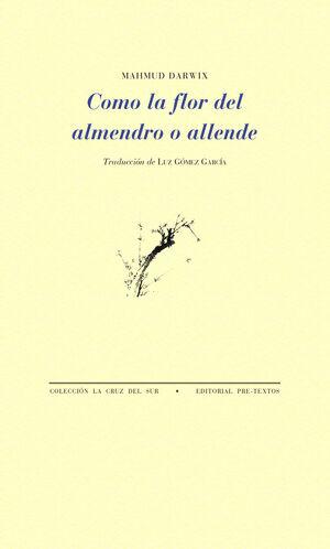 COMO LA FLOR DEL ALMENDRO O ALLENDE