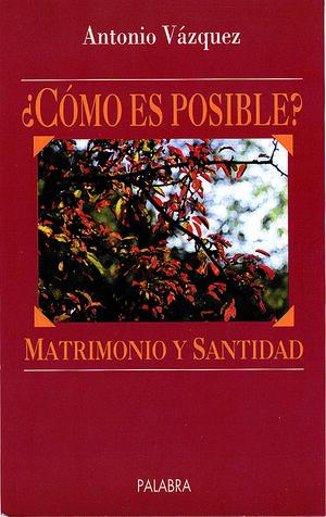 MATRIMONIO Y SANTIDAD. ¿CÓMO ES POSIBLE?