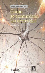 CÓMO SE COMUNICAN LAS NEURONAS