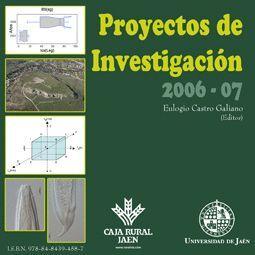 PROYECTOS DE INVESTIGACIÓN 2006-07