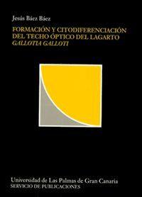 FORMACIÓN Y CITODIFERENCIACIÓN DEL TECHO ÓPTICO DEL LAGARTO GALLOTIA GALLOTI
