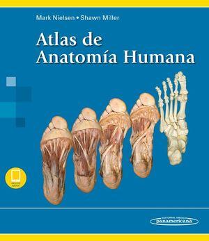 NIELSEN:ATLAS DE ANATOM?A HUMANA+E