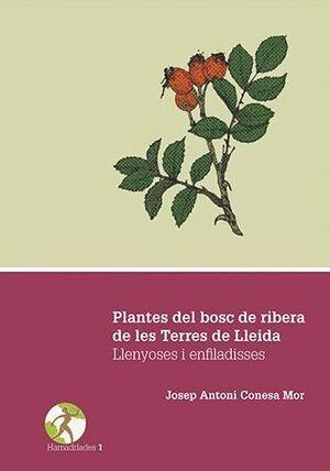 PLANTES DEL BOSC DE RIBERA DE LES TERRES DE LLEIDA