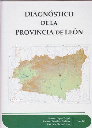 DIAGNÓSTICO DE LA PROVINCIA DE LEÓN
