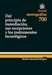 DEL PRINCIPIO DE INMEDIACION, SUS EXCEPCIONES Y LOS INSTRUMENTOS TECNOLOGICOS