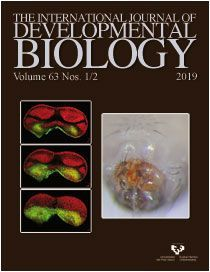 THE INTERNATIONAL JOURNAL OF DEVELOPMENTAL BIOLOGY VOL. 63.1/2